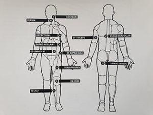 Meetpunten Personal Hormonal Profiling