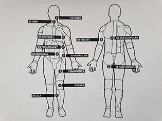 Personal Hormonal Profiling
